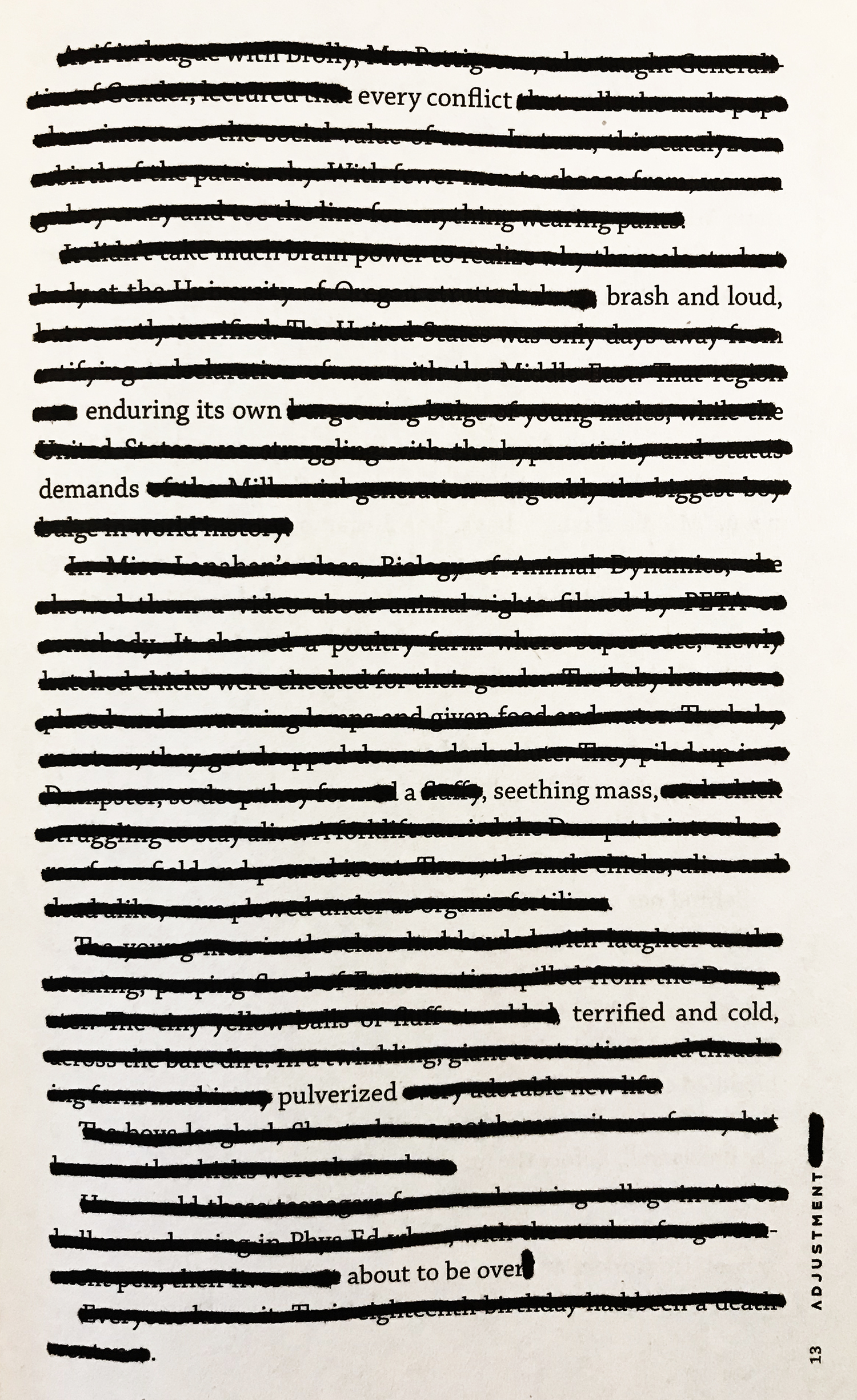 Adjustment, page 13